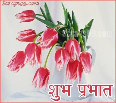 Shubh Prabhat Wallpapers - Shubh Din SMS, Quotes, Status, Greetings, Message Images, Wallpapers, Photos