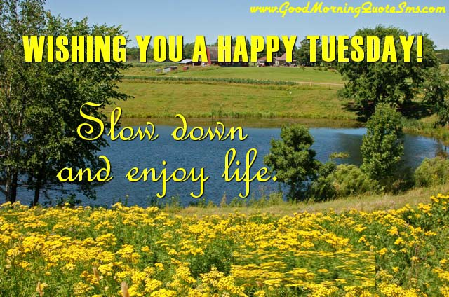 Tuesday-Morning-Quotes-Happy-Tuesday-Wishes-Message-Status-Pictures-Images-Wallpapers-Photos-pictures