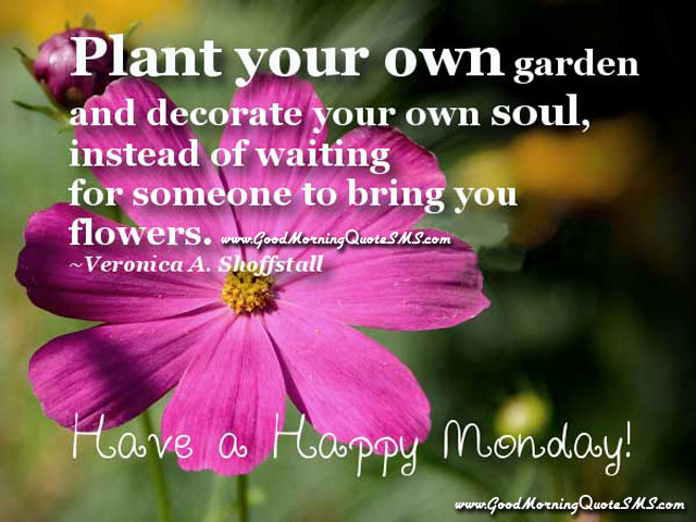Happy Monday Greetings - Happy Morning Images, Good Morning Quotes ...