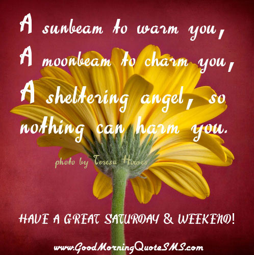 What will you do today have a great weekend image result for good morning saturday messages m4hsunfo