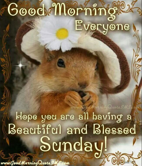 Blessed Sunday Quotes - Beautiful and Blessed Sunday Wishes Images, Wallpapers, Photos, Pictures Download