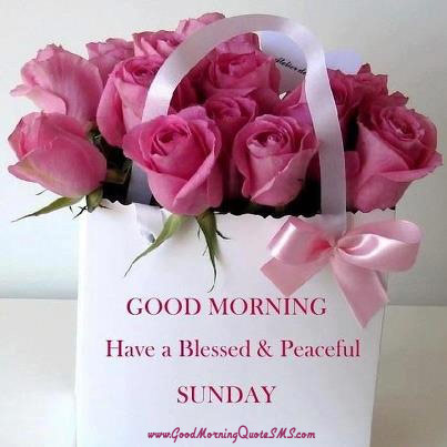 Have a Blessed and Peaceful Sunday Wishes