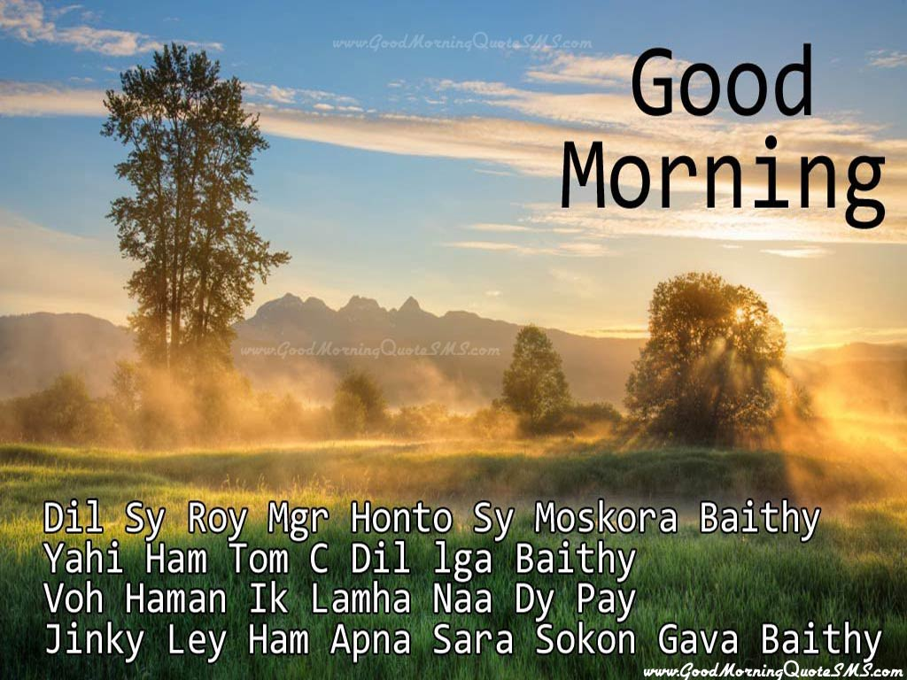 Good Morning Hindi Shayari for Friends Images, Wallpapers, Pictures