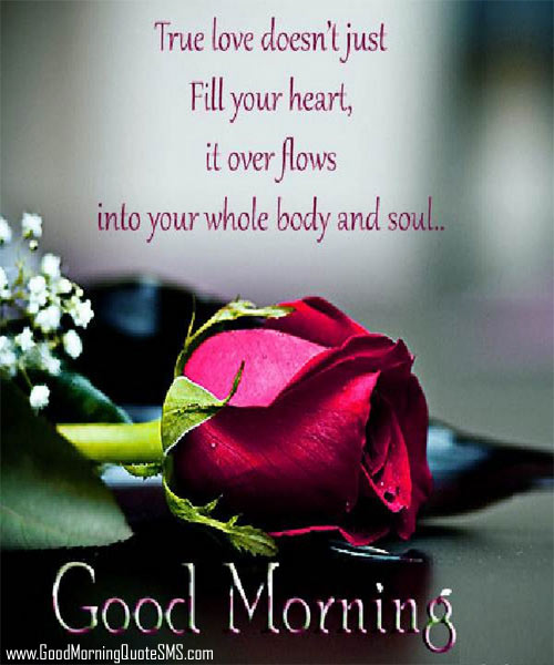 Lovely Good Morning Sweetheart Images, Wallpapers, Photos, Pictures Download
