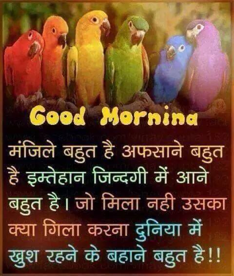 Good Morning SMS Text Msg in Hindi to friends and loved ones Images, Wallpapers, Photos