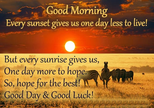 Early Morning Quotes Images