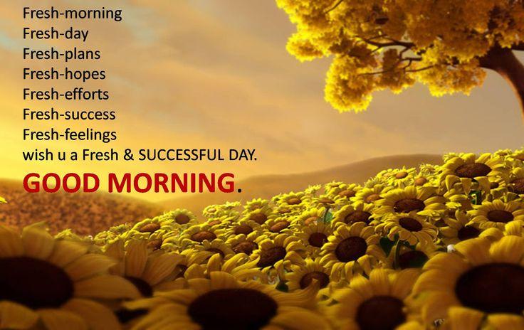 Funny Saturday Morning Quotes