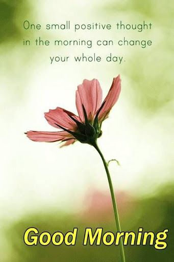Good Morning Love Thought Wallpaper : Happy Thursday Wishes - Thursday Morning Images Quotes