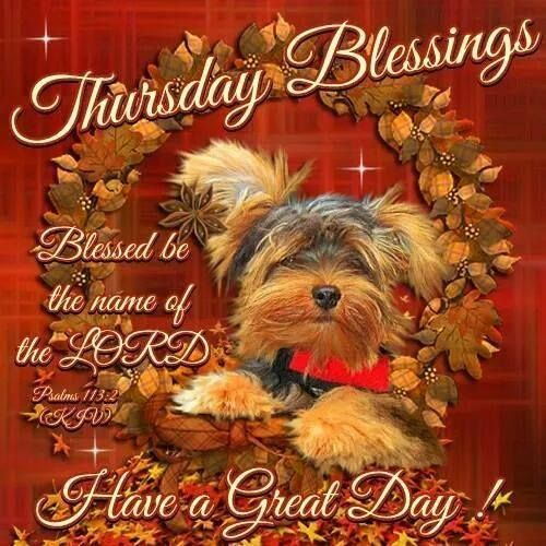 Thursday Blessings Have a Great Day