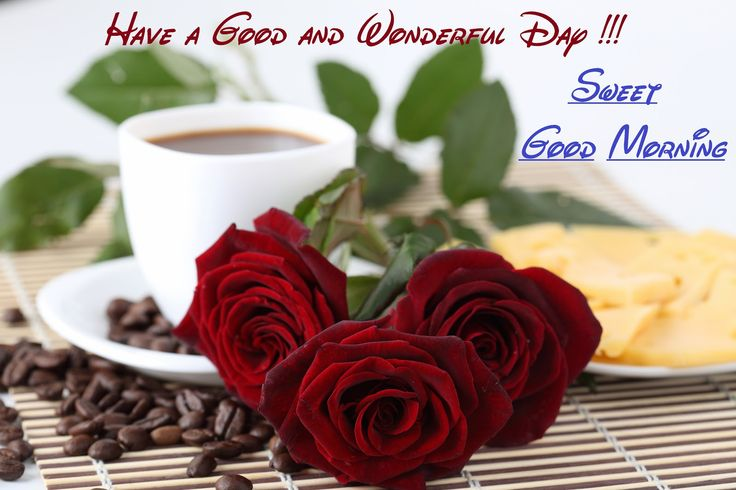 Good Morning Have a Amazing Day Wishes Quotes and Messages Images