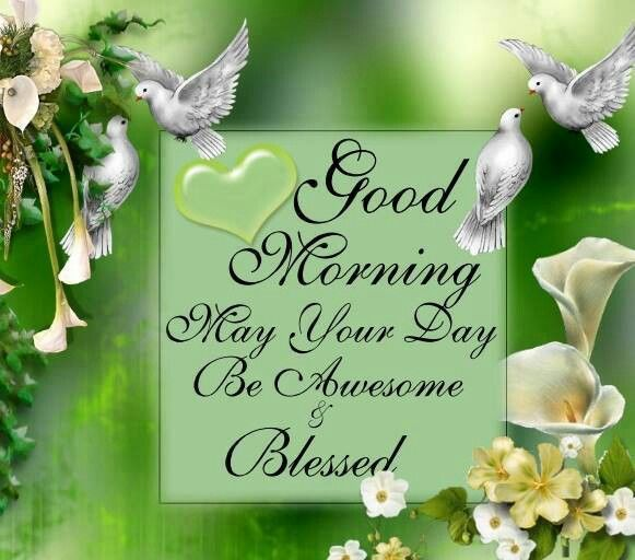 Good Morning May Your Day Be Blessed and Awesome Wishes Images