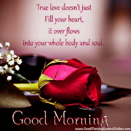 Good Morning True Love Quotes Wishes Images Wallpapers Photos